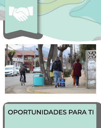El Programa tiene como objetivo la pavimentación o repavimentación de la vereda, pasaje o calle sin pavimentos o cuyos pavimentos presentan un alto deterioro. Los vecinos organizados en Comités de […]