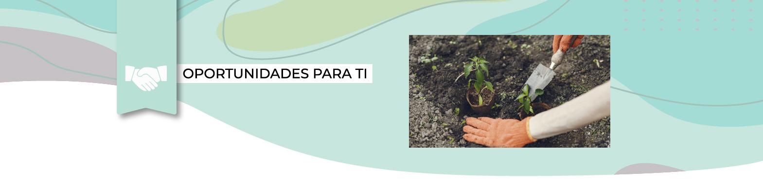 Fondo de Protección Ambiental 2022 – Áreas Verdes Comunitarias