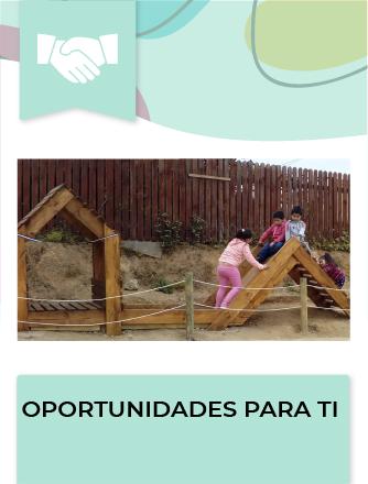 Programa destinado a Organizaciones Comunitarias y Juntas de Vecinos, residentes en áreas o localidades urbanas de más de 5.000 habitantes