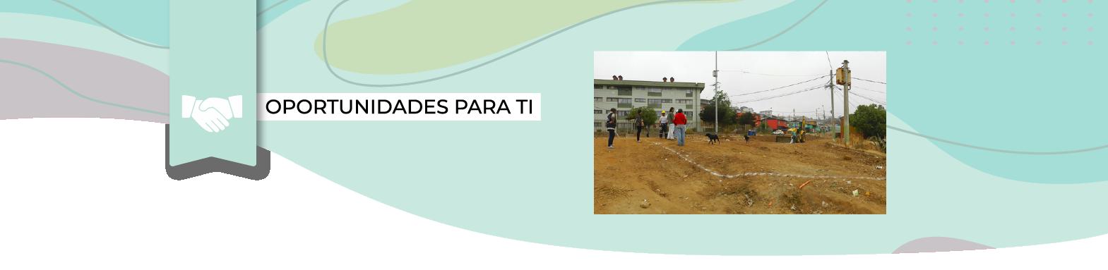 """""""Vive tu vereda"""": Programa de Pavimentación Participativa"""