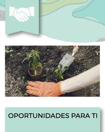 El Ministerio del Media Ambiente abrió los Fondos de Protección Ambiental 2022, que es el primer y único fondo concursable de carácter nacional con que cuenta el Estado de Chile […]